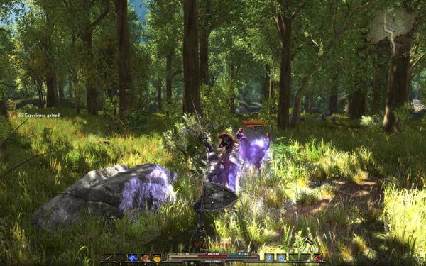 ArcaniA: Gothic 4 – 森林浴に癒されて(2)