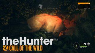 【終了しました】9/19 21:30~【真夏の夜の鹿狩り配信theHunter: CotW】